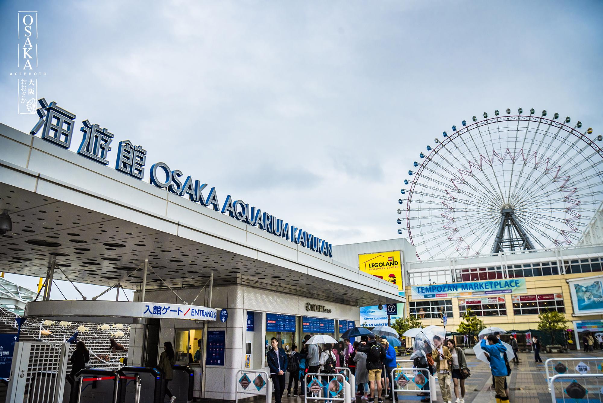 【大阪景点图片】大阪海游馆