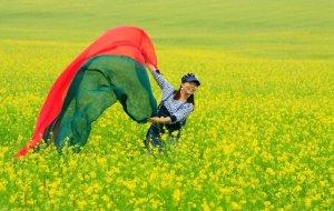 【山丹图片】在蓝天白云鲜花中沉醉—夏游山丹军马场