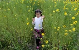 【徽州图片】黄白黑的交响曲~歙县三日行。