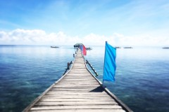 宿务,心念神往,Nalusuan娜鲁苏安岛+Oslob奥斯洛布鲸鲨