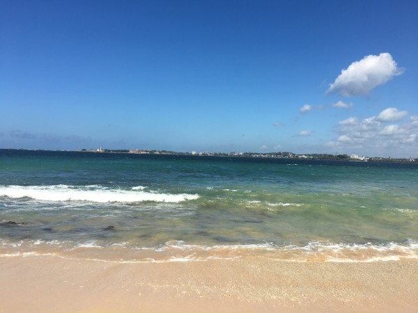 无人海滩jungle beach