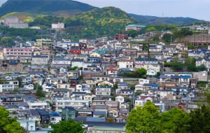 【长崎图片】三入九州-紫藤盛花期的长崎与小仓-看花撸猫两不误