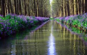 【泰州图片】春天,和大自然亲密接触(兴化一日游)