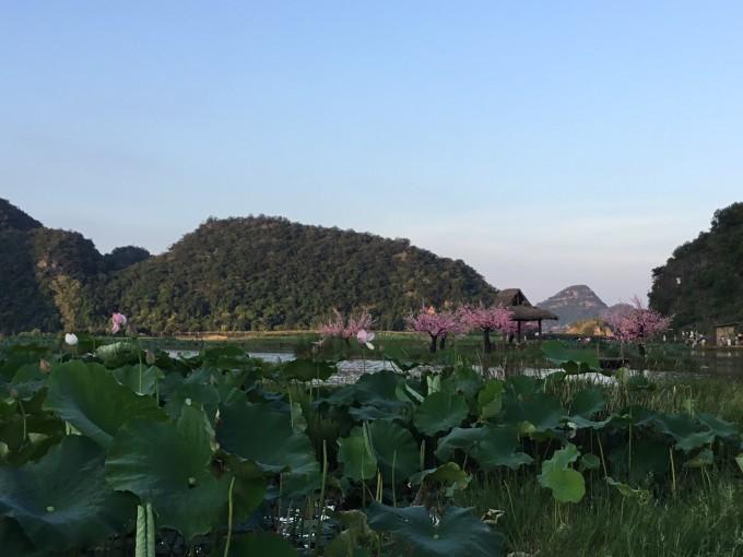 普者黑之三生三世十里桃花拍摄点,桃花岛自助游攻略
