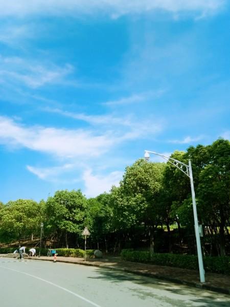 南京最美校园 南京旅游职业学院