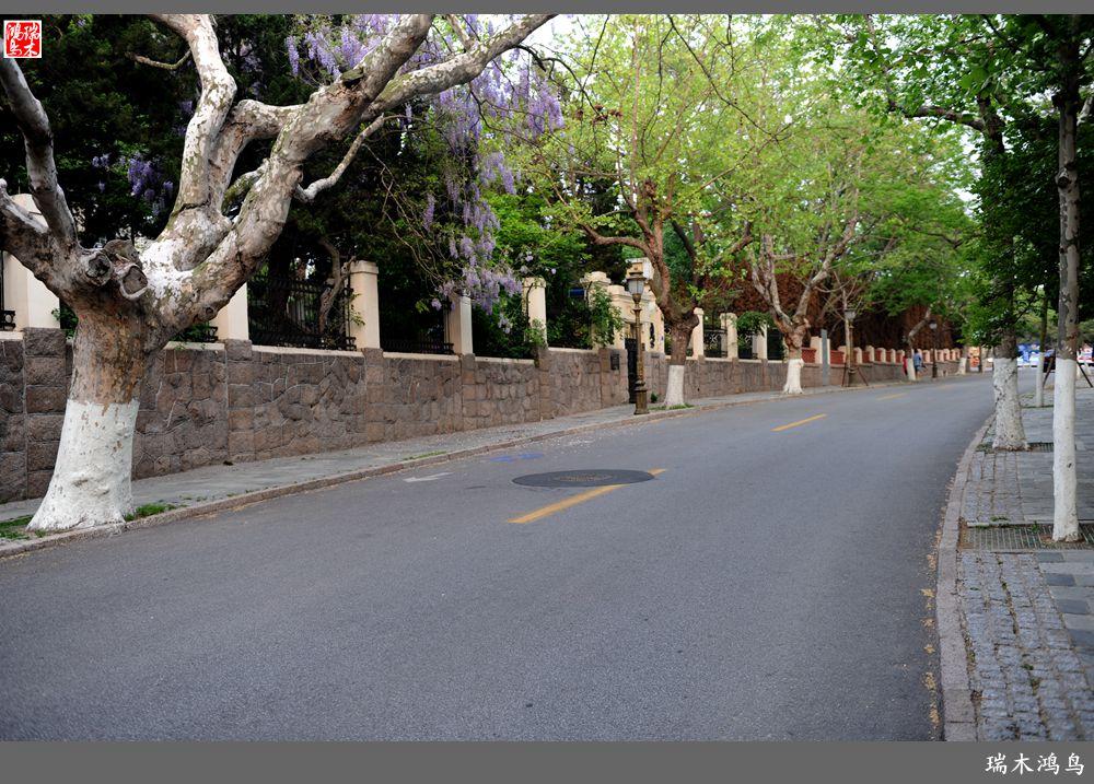 新景观设计 街心花园