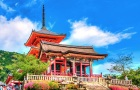 日本京都奈良一日游(清水寺+祗园+锦市场+伏见稻荷大社+东大寺+奈良公园)
