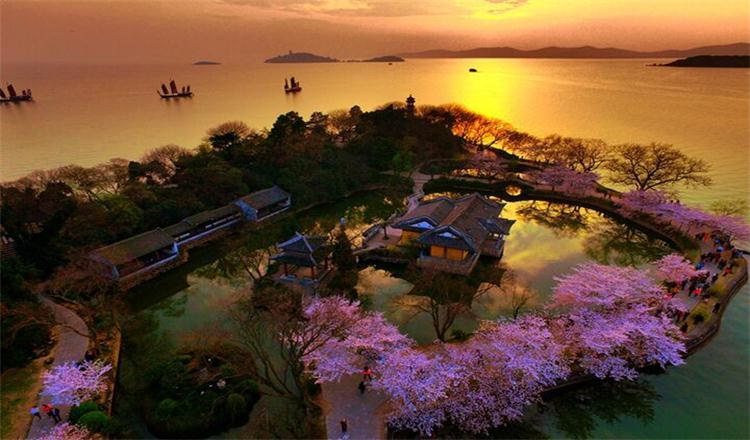 太湖鼋头渚观鸟节图片