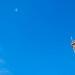飞机·铁塔·流云