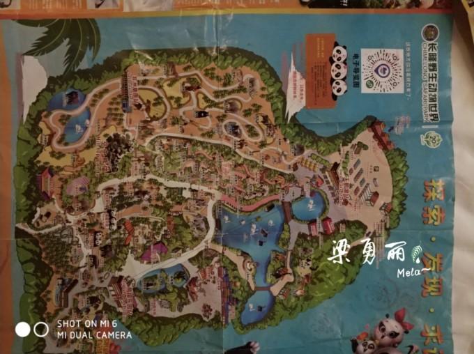 漫(慢)游羊城(3)––长隆野生动物园