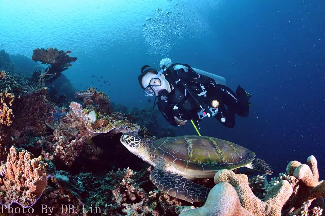 沖繩藍海潛水記(有干貨:沖繩辦簽證不要錢!...