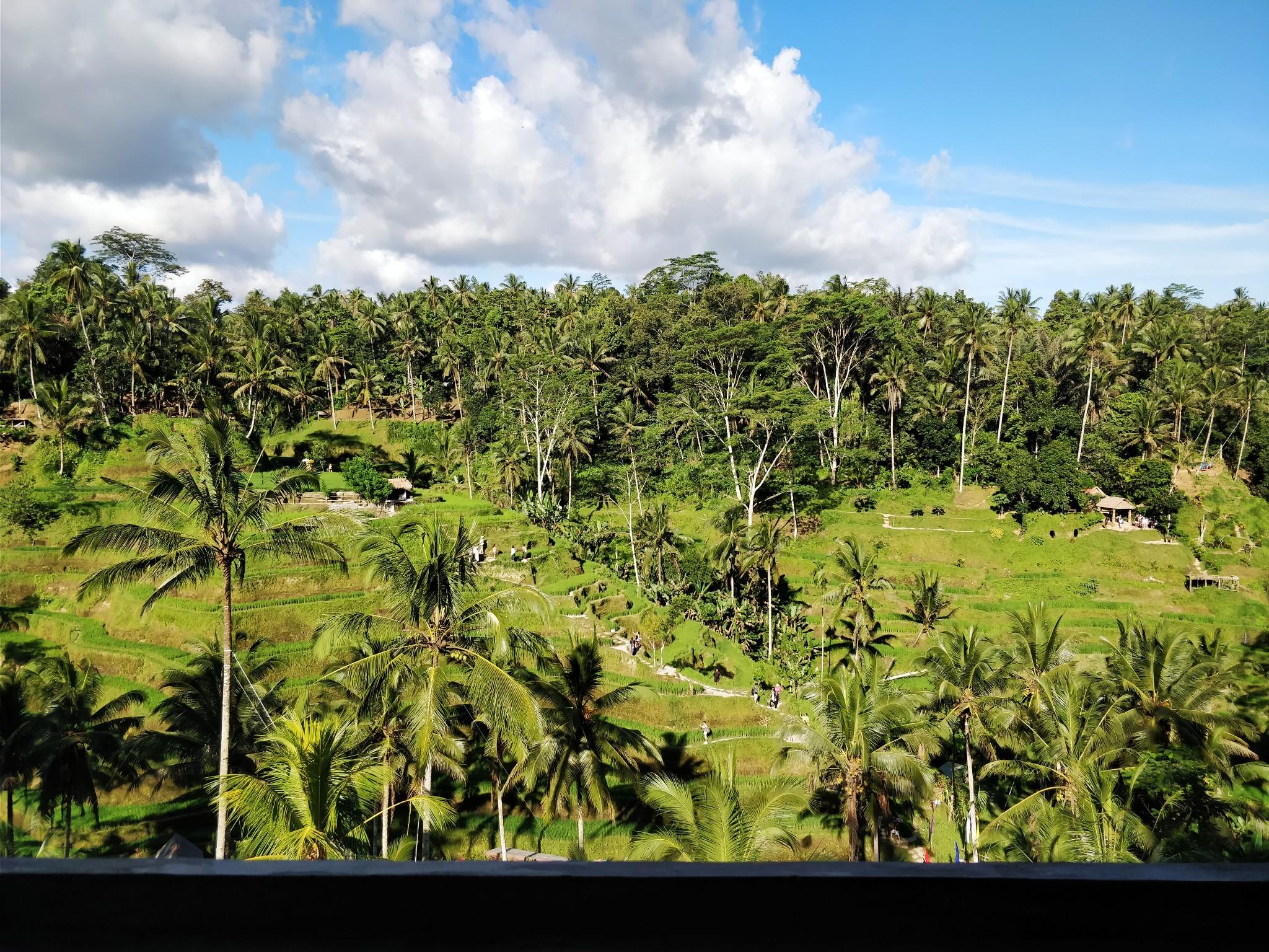 巴厘岛骑行路线有哪些,巴厘岛骑行路线推荐
