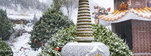 福建泉州德化九仙山旅游度假区(提前一小时下单/佛光/云海/雾凇等气象奇观)