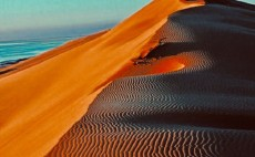 鸟取砂丘(第三章):500万美金建起全球唯一沙雕国际艺术馆_游记