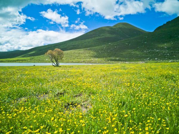 阿坝县莲宝叶则风景区是一个规模较大,气势雄浑,奇峰异石变幻莫测