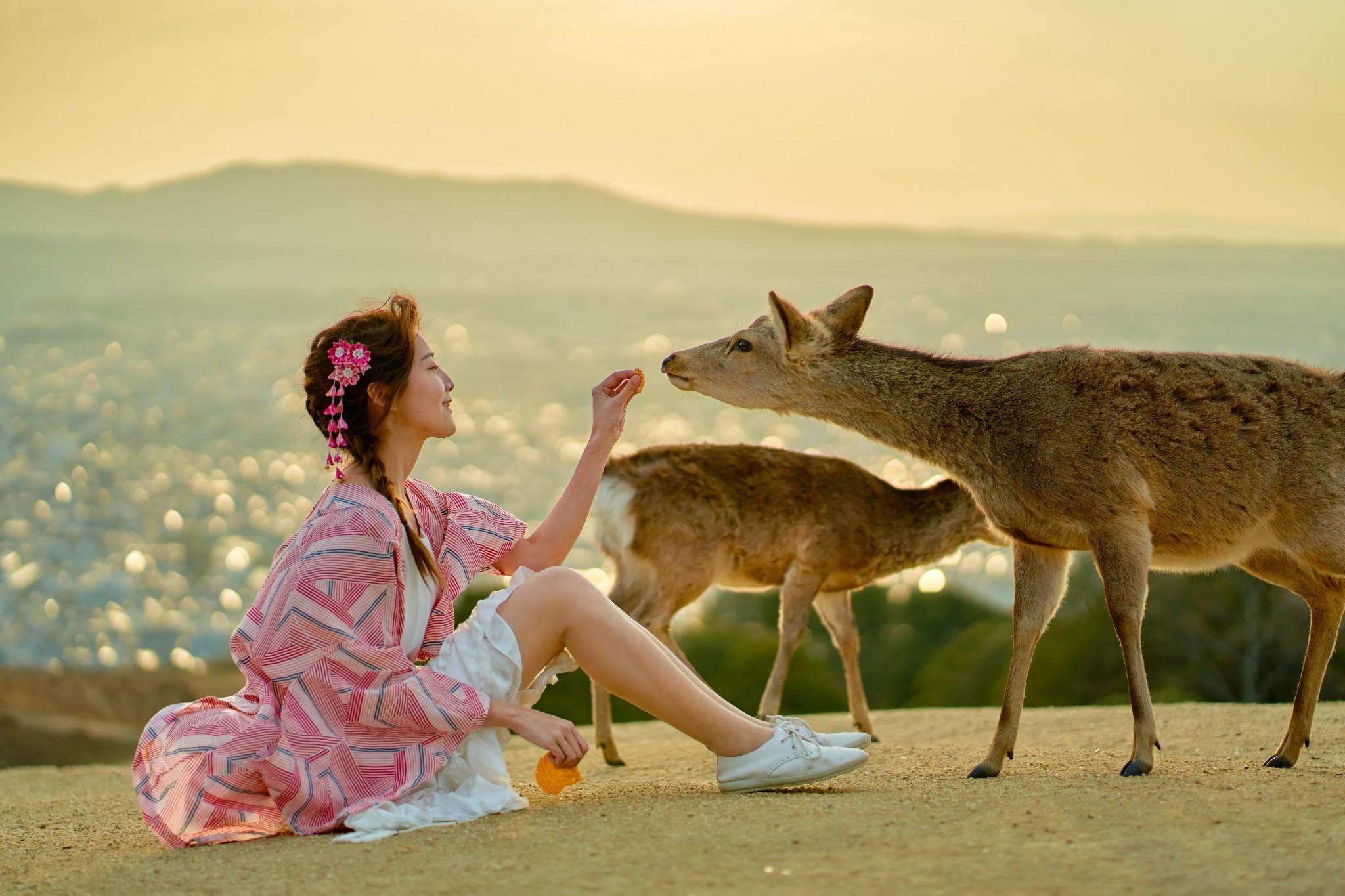 ·等到阴霾散去,我们一起去赴这场樱花盛宴吧!(京都&和歌山赏樱超详细攻略)_游记