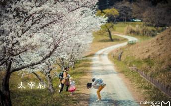 日本 ��藏�o念
