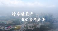 汉中最新抗疫公益宣传片:待春暖花开,我们繁华与共