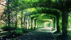 无锡景点-渤公岛生态公园