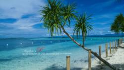 菲律宾景点-处女岛(Virgin Island)