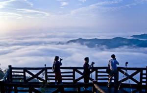 【娄底图片】最美紫鹊界之《云雾》