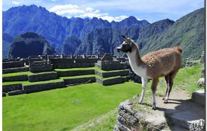 【马丘比丘图片】绝顶之巅上无与伦比的印加水利工程【寻古访今秘鲁行(13)】