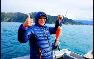 【奥克兰图片】马年出游第一站——新西兰自驾游