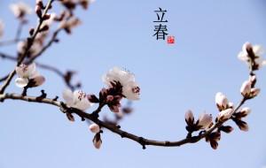 【中国图片】我的中国风,24张唯美图片展示1年24节气,解析照片背后的故事