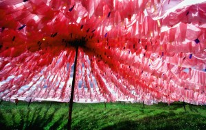 【年保玉则图片】天神的花园—年保玉则,众神的故乡—阿坝