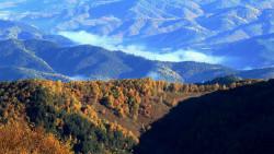 承德景点-辽河源国家森林公园