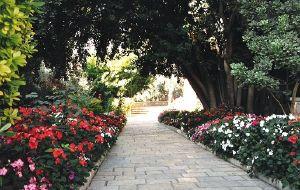 以色列娱乐-Ticho House(小耶路撒冷)