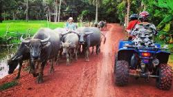 吴哥窟娱乐-Quad Adventure Cambodia