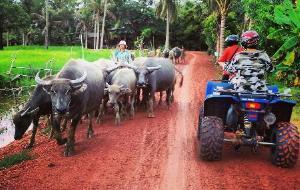 柬埔寨娱乐-Quad Adventure Cambodia