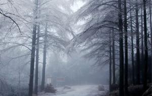 【咸宁图片】冰雪世界黄龙山