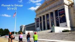 芝加哥景点-菲尔德自然历史博物馆(Field Museum of Natural History)