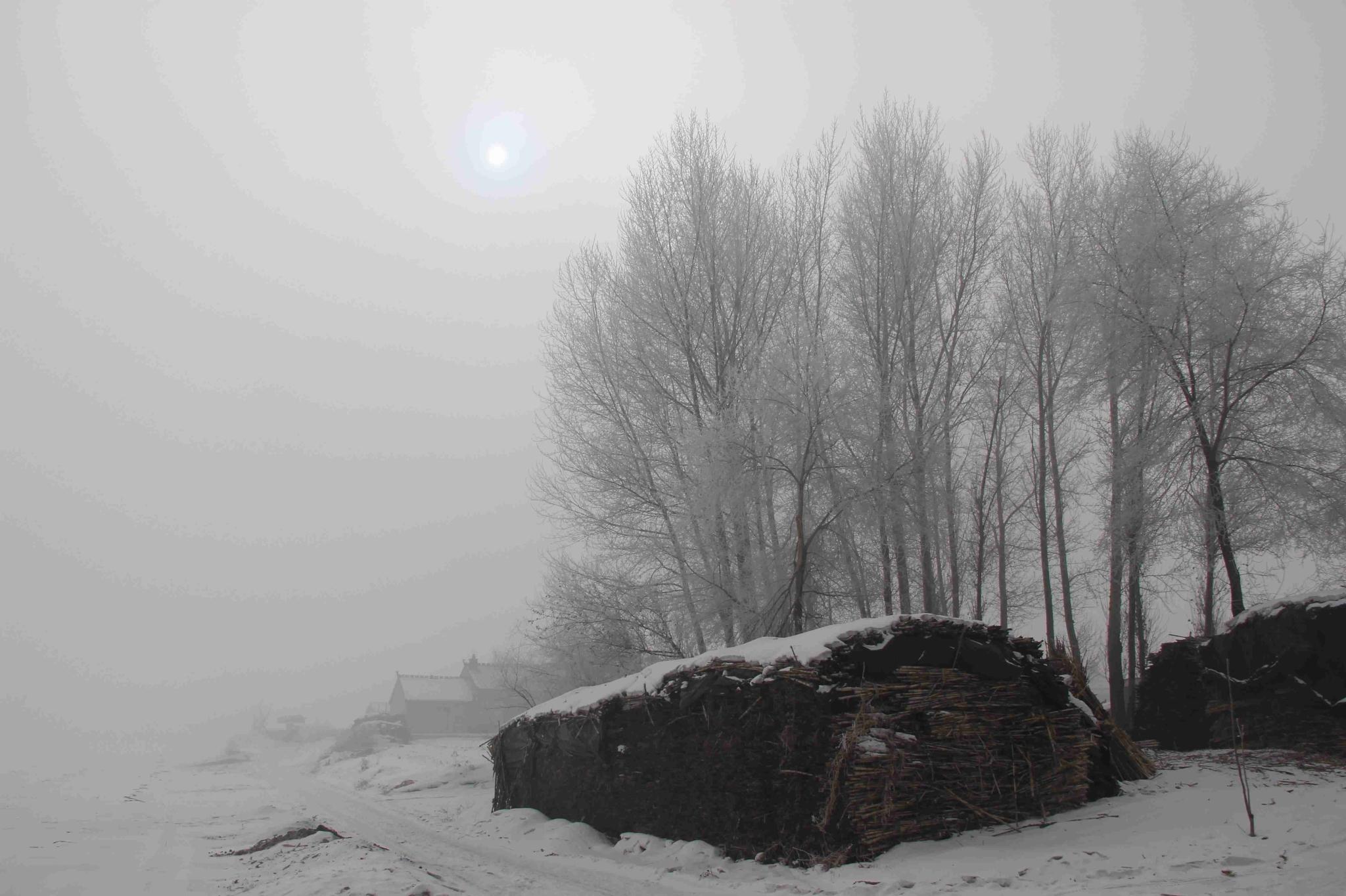 大东北之吉林雾凇岛--朴素的童话世界