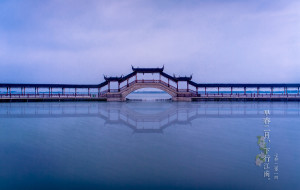 【杭州图片】【早春二月下行江南】你来的那天春天也来到(更新完毕)