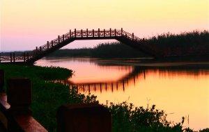 【淮安图片】游--洪泽湖湿地公园