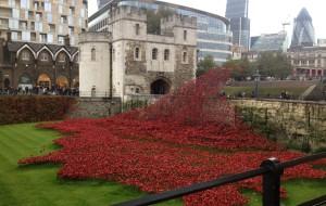 【因弗内斯图片】2014年十月英国20天蜜月慢游,伦敦~曼彻斯特~湖区~爱丁堡~因弗内斯~约克