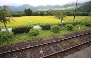 【熊本市图片】对着手表赶火车,三个女生的日本北九州之旅(福冈、熊本、阿苏、由布院)