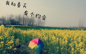 【寿县图片】每个人都有最爱的家乡_____走在乡间的小路上