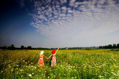 #消夏计划#被风吹过的夏天