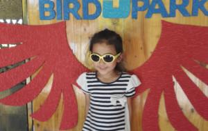 【克拉克图片】Sunny holiday 之四——菲律宾克拉克游学之旅