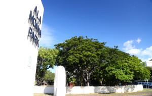 夏威夷娱乐-阿拉莫纳海滩公园