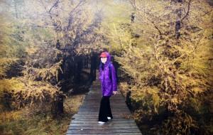 【乌兰察布图片】乌兰察布秋日童话—意犹未尽的草原、火山、森林之旅