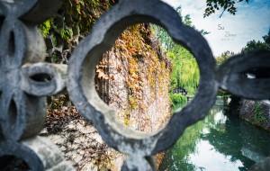 【湖州图片】十一月的秋色江南,杭州-南浔-苏州-周庄-锦溪-上海