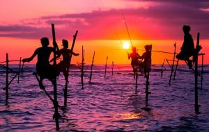 【科伦坡图片】【思你兰卡 · 遇见最初的自己】——2016年11月(斯里兰卡8日游)