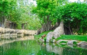 西班牙娱乐-瓦伦西亚动物园