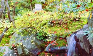 广州订火车票_西雅图日本花园攻略,西雅图日本花园门票_地址,西雅图日本花园 ...