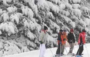 札幌娱乐-札幌盘溪滑雪场